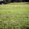 soccerfield